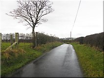 H5371 : Dreenan Road, Bancran by Kenneth  Allen