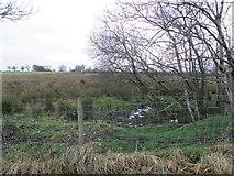H5371 : Rushy ground, Bancran by Kenneth  Allen