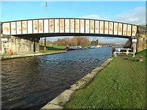 SE3724 : Foxholes Bridge by derek dye