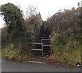 ST1166 : Flight of steps, Dock Road, Barry Island by Jaggery