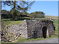 NY7947 : Lime kiln near Carrshield by Trevor Littlewood