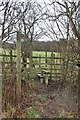 NY2133 : Public footpath from the A591 to Greenclose by Martin