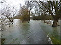 TL1498 : Record annual rainfall causes flooding in Peterborough by Richard Humphrey