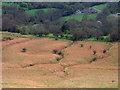 SO2833 : Stream grooves on mountain slope by Trevor Littlewood