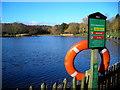 TQ2786 : Model boating pond by Mark Percy