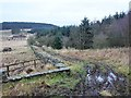 NY8075 : Pennine Way at Ladyhill by Oliver Dixon