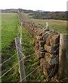 NZ9507 : Wall on Cleveland Way by Derek Harper