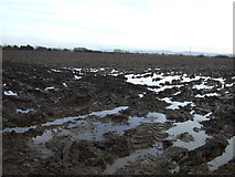 NZ3813 : Waterlogged field off Carter's Lane by JThomas