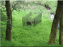 NS6725 : Covenanters' grave close to Upper Wellwood, west of Muirkirk by Colin Park