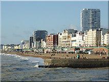 TQ3103 : Brighton Beach west of the pier by Roger  Kidd