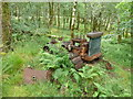 NM7799 : Inverie: abandoned vehicle in the woods by Chris Downer