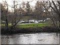 SO1091 : Riverside skate park by Penny Mayes