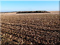TL0267 : Sweeping arable landscapes by Michael Trolove