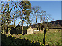 SK2767 : Barn and line of trees below Raven Tor by Andrew Hill