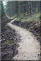 NJ1624 : Mountain bike trail, Tom a' Chor by Dorothy Carse