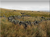 SD8577 : Abandoned Sheepfold by Cosh Beck by Chris Heaton