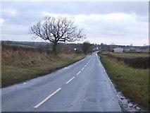 NZ3720 : Minor road towards Bishopton by JThomas