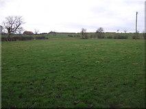 NZ3620 : Farmland near Bishopton by JThomas