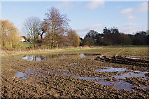TL5646 : Waterlogged field by M H Evans