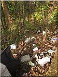 SX9065 : Litter by the Newton Road, Torquay by Derek Harper