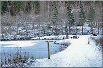 NT2840 : Upper pond, Glentress by Jim Barton