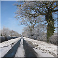 SE7974 : Riggs Road, January view by Pauline E