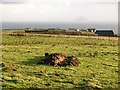 NR9821 : Field, West Bennan by Richard Webb