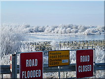 TL5392 : ROAD CLOSED, ROAD FLOODED - The Ouse Washes near Welney by Richard Humphrey