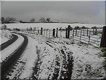 H5572 : Roeglen Road, Bracky by Kenneth  Allen