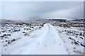 NN6887 : Track near Loch Cuaich by Dorothy Carse