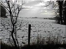 H5664 : Radergan Townland by Kenneth  Allen