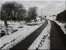 H5664 : Lane at Radergan by Kenneth  Allen