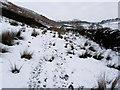 SD7446 : Rough Pasture below Simpshey Hill by Chris Heaton