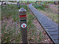 SY9787 : Post and boardwalk on waymarked trail at RSPB Arne nature reserve by Phil Champion