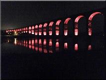 NT9953 : Border Bridge illuminated 2 by Barbara Carr