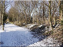 NZ1465 : Wylam Waggonway, site of Heddon on the Wall Station by Andrew Curtis