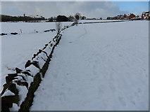 SE1614 : Field path near Kaye Lane, Almondbury by Samantha Waddington