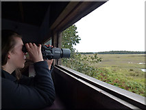 SY9788 : Shipstal hide, RSPB Arne nature reserve by Phil Champion