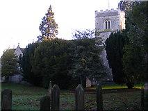 TL1314 : St.Nicholas Church by Adrian Cable