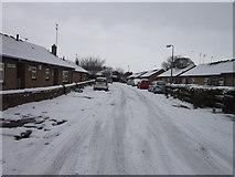 TA0729 : Longden Street off Walton Street, Hull by Ian S