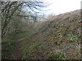 ST4692 : Part of the outer ramparts of Llanmelin hillfort by Jeremy Bolwell