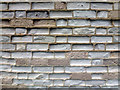 SY9776 : Weathered wall at Winspit by Phil Champion