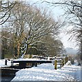 ST2888 : Restoration at Fourteen Locks [8] by Robin Drayton