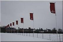 SU5985 : Flagpoles in the snow by Bill Nicholls