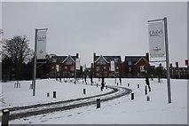 SU5985 : Snowy road at the Meadows by Bill Nicholls