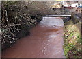 ST3089 : Vigorous flow in Crindau Pill, Newport by Jaggery