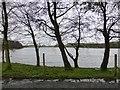 H4368 : Lough Muck by Kenneth  Allen
