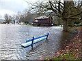 SH7961 : Park Bench following rain by Richard Hoare
