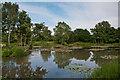 TQ2841 : Riverside Garden Park by Ian Capper