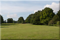 TQ2648 : Earlswood Common by Ian Capper